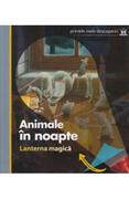 Animale in noapte - Lanterna magica